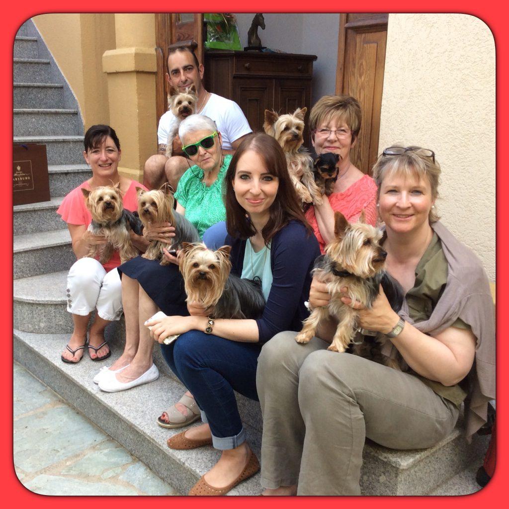 Réunion portée taïka 2014 les chiens ont 3ans