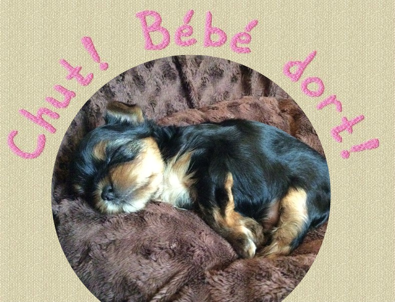 Le petit à encore besoin de beaucoup de sieste!!!